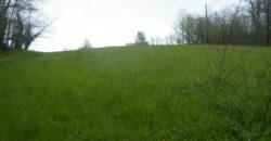 Terrain avec C.U – Viabilisé – Lafrançaise – REF 1425