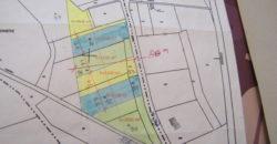 Grand terrain d'environ 19 000 m² – idéal pour investisseur – 15 min de Montauban – REF 1426
