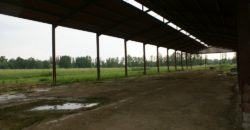 Montauban EST 8 km – Propriété irriguée de 8 ha 40 avec un hangar de 1100 m² – REF 1447