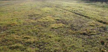 Terrain constructible-St Cirq 5 km Caussade- sur 1,5 ha- ref 1483