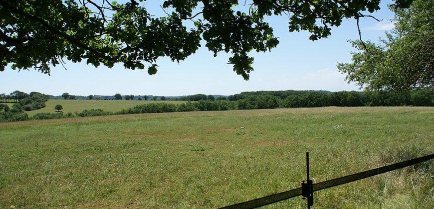 Propriété agricole- élevage de chevaux-30 km Caussade-90 ha-écuries 20 boxs-ref 1519